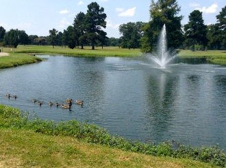 One of our stocked fishing ponds!
